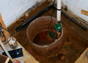 Extreme clogging and rust in a Wayne sump pump system